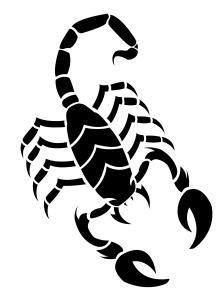 scorpion_tattoo_or_design_by_savvyidiot-d4gitwj[1]