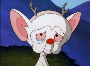 Pinky and the Brain Photo[1]1